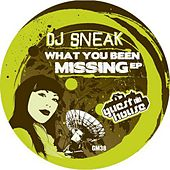 What You Been Missing by DJ Sneak