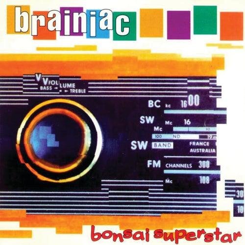 Bonsai Superstar by Brainiac
