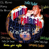 Greatest Hits by Andy Palacio
