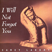 I Will Not Forget You by Carey Landry