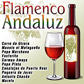 Flamenco Andaluz by Various Artists