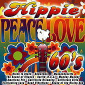Hippie 60's by The 60's Hippie Band