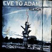 Reach by Eve to Adam