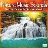 Nature Sounds: Nature Music by Nature Music Sounds