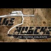 Cuando Se Ama - Single by Los Huaches De Tierra Caliente