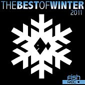 The Best Of Winter 2011 by Various Artists