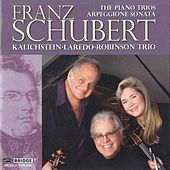 Franz Schubert: The Piano Trios and Arpeggione Sonata by Various Artists