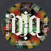 All Junglist EP by DJ Q
