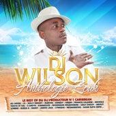 Le Best of du DJ producteur No. 1 Caribbean DJ Wilson (Anthologie Zouk 48 Hits) by Various Artists