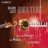 Brahms - Ligeti: Horn Trios by Various Artists