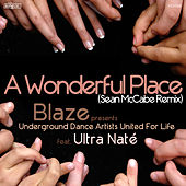 A Wonderful Place (Sean McCabe Remix) by Blaze