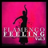 Flamenco Feeling Vol. 3 by Various Artists