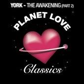 The Awakening (Part 2) by York