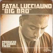 Big Bro by Fatal Lucciauno