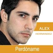 Perdóname by Alex Hernandez