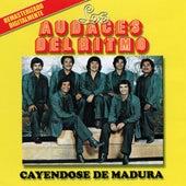 Cayendose De Madura by Los Audaces Del Ritmo