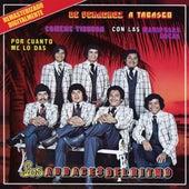 De Veracruz A Tabasco by Los Audaces Del Ritmo