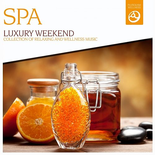 Luxury Weekend (Music for Relaxing Times, Massage, Sound Therapy, Deep, Restful Sleep, SPA Visits and Stress Relief) by Spa Music