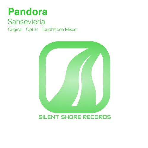 Sansevieria by Pandora