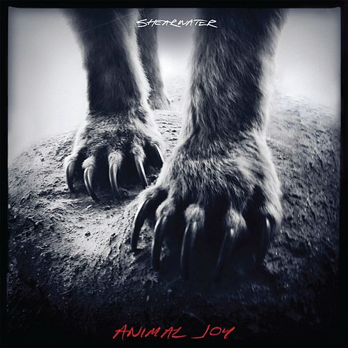 Animal Joy by Shearwater