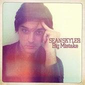 Big Mistake by Sean Skyler