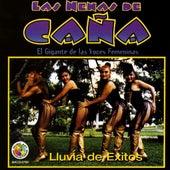 Lluvia De Exitos by Las Nenas De Cana