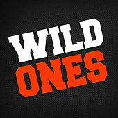 Wild Ones by Hip Hop's Finest