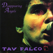 Disappearing Angels by Tav Falco's Panther Burns