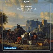 Telemann: Wind Concertos, Vol. 7 by Various Artists