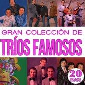 Gran Colección de Trios Famosos 20 Boleros Famosos by Various Artists