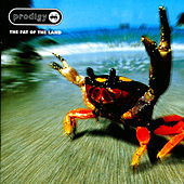 Fat Of The Land by The Prodigy