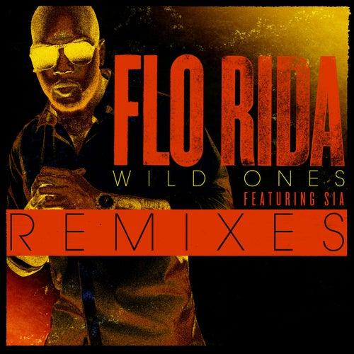 Wild Ones Remixes by Flo Rida