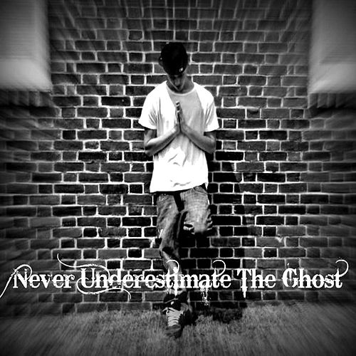 Never Underestimate The Ghost by casper (1)