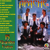 15 Grandes Exitos by Apache 16