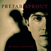 38 Carat Collection by Prefab Sprout