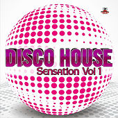 Disco House Sensation Vol.1 by Various Artists