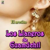 El Aretito by Los Llaneros De Guamuchil