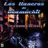 Voy a Tirarme a los Vicios by Los Llaneros De Guamuchil