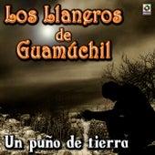 Un Puno de Tierra by Los Llaneros De Guamuchil