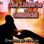 Limosna de un Hijo by Los Llaneros De Guamuchil