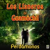Perdamonos by Los Llaneros De Guamuchil