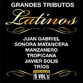 Grandes Tributos Latinos - Serie Tributo by Various Artists