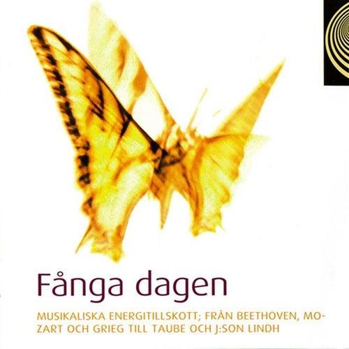 Fånga dagen by Various Artists