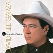 10 Grandes Exitos by David Lee Garza