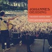 1000 Menschen & Ich lass dich geh'n by Johannes Oerding