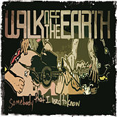 Somebody That I Used To Know by Walk off the Earth