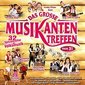 Das große Musikantentreffen - Folge 31 by Various Artists