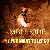 Why You Want To Let Go by Ambelique