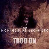 Trod On by Freddie McGregor