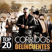 Top 20 Corridos Delincuentes by Various Artists
